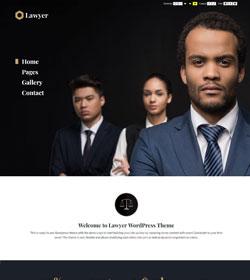 Lawyer + WCAG 2.0 / ADA / 508 Standards