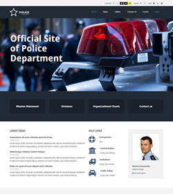 Police Department + WCAG 2.0 / ADA / 508 Standards